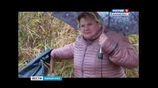 В Челябинске многодетным семьям выдали земли на болоте(, 2015-10-09T15:33:19.000Z)
