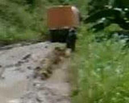 Road to Kalamansig