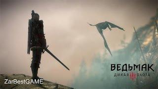 The Witcher 3: Wild Hunt - Дракон или как овцу выгуливали). Прохождение #63   Gameplay Walkthrough