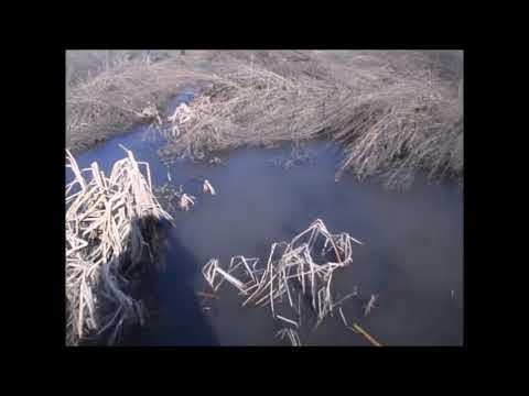 с Крона в Уфе текут ручьи мутной воды.