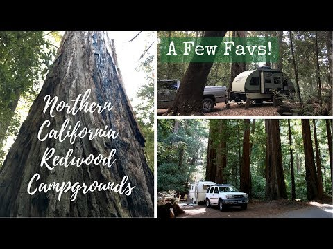 nocal-redwood-campgrounds-~-a-few-favs!