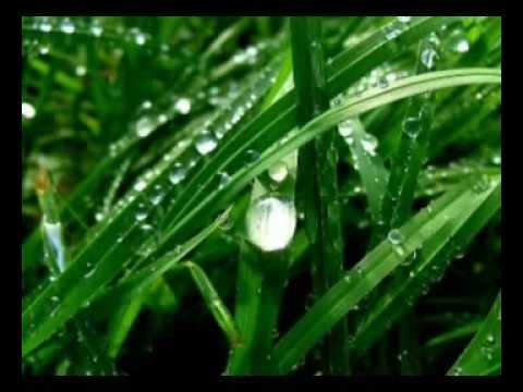 oru mazha - malayalam kavitha - YouTube