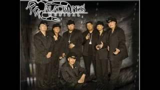 Por tu amor (vivo) / Alacranes Musical