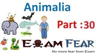 Animalia Biology CBSE class 11 XI