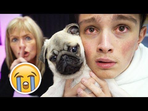 Selling Morgzs New Dog Prank!! **HE CRIED**