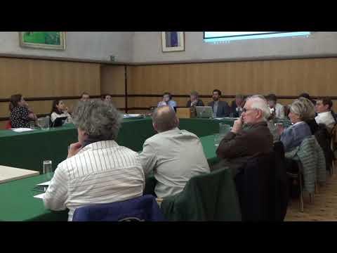 Conseil communal 25 mars 2019: vidéo