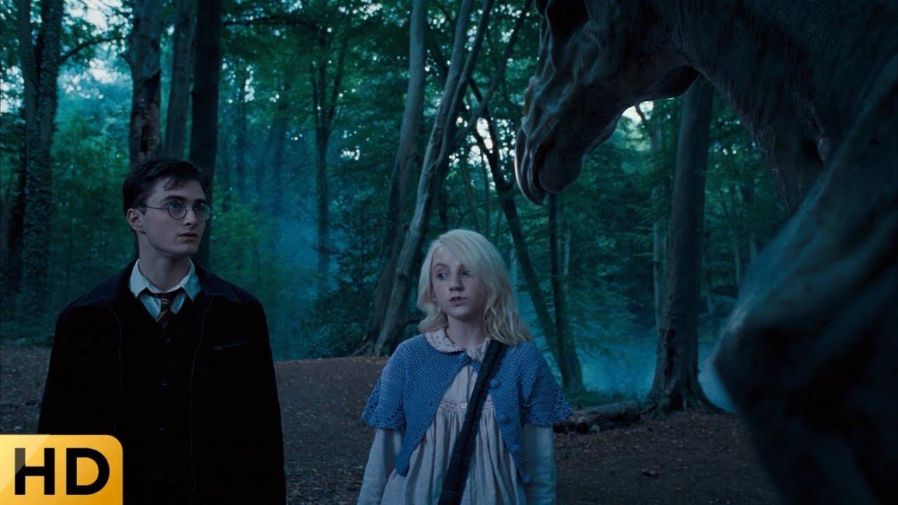 Гарри и Полумна кормят нарглов. Гарри Поттер и Орден ...