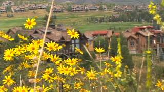 flowers and homes in Colorado