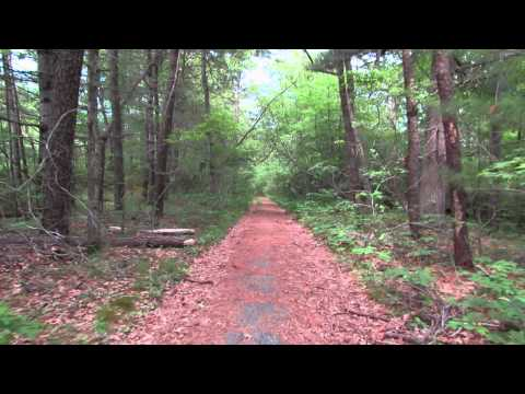 Ghost road: Old Route 28 in Mashpee