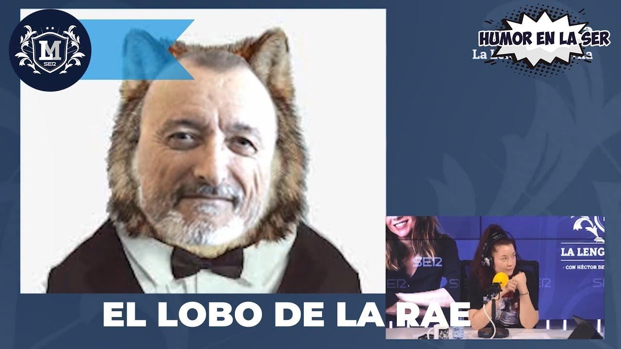 Pérez-Reverte, el lobo de la RAE