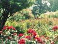 Anne Murray - What A Wonderful World