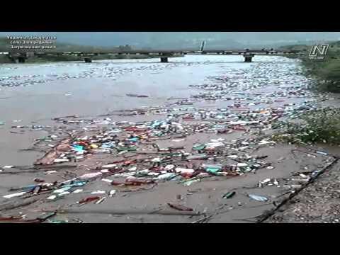Галилео. Очистка Москвы-реки