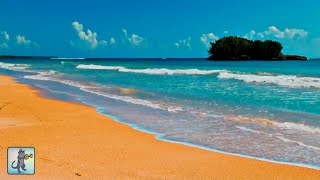 ✧ Wonderful Tropical Beach・Planet Earth Amazing Nature Scenery・Best Relax Music・3 HOURS・1080p HD ✧