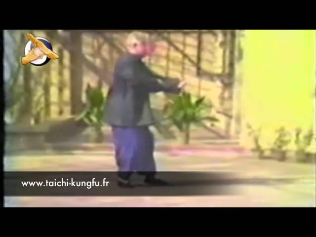 Fu Zhong Wen - Tai Chi style Yang  [杨氏太极拳 Taijiquan style Yang]