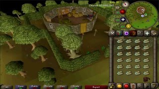 [OSRS] - Cutting Magic trees for 1 hour (at 75 woodcutting)