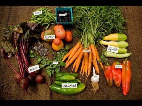 Rachel Green on Seasonal Food