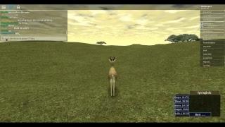 roblox wild savannah spring bok herd