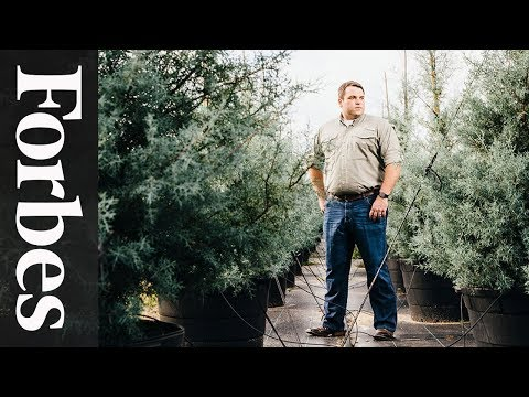 Jonathan Saperstein: The Tree Manufacturer   Forbes