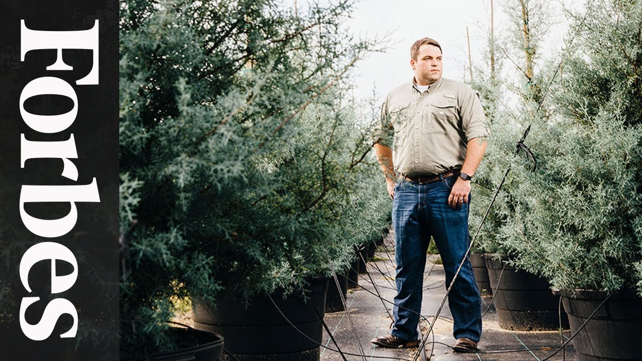 Jonathan Saperstein: The Tree Manufacturer | Forbes