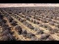 Australia is Entering a Mega Drought the Repercussions: Kevin Long (726)