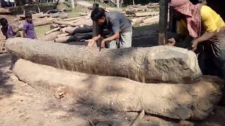 A Lot of Mahogany Wood Cutting Within Dead Line by Super Fast Workers/Workers in Harry to Meet Line
