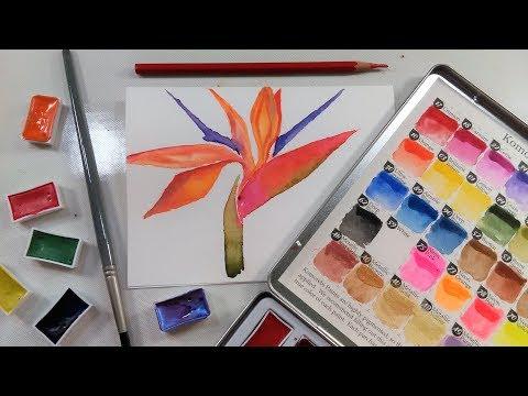 Easy Bird of Paradise Watercolor Tutorial & MozArt Komorebi Watercolor Paint Review