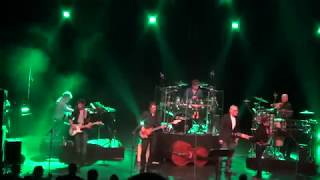 Video Tribute to the cats band, Be my day. download MP3, 3GP, MP4, WEBM, AVI, FLV Juni 2018