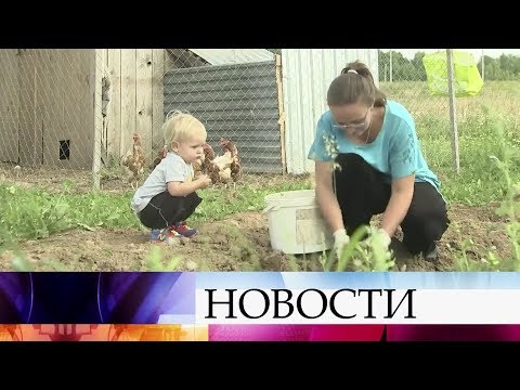 ВКалужской области многодетным семьям выделили землю под застройку без дорог икоммуникаций.