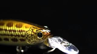 NOMURA - Real fish LIMITED EDITION