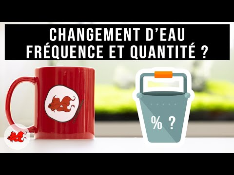Aqua Tea '- Water change how often and how much? from YouTube · Duration:  4 minutes 42 seconds