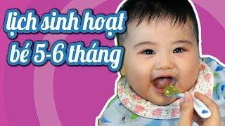Lịch sinh hoạt cho bé 5-6 tháng # Một ngày của em Rex & mẹ Gấu