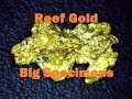 Reef Gold, Big Specimens and gold cleanup