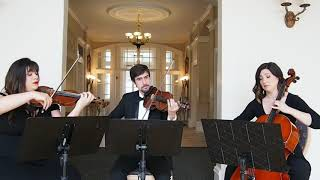 A Whole New World - String Trio