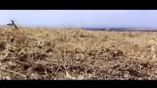 charles-king-ori-mahindi-momu-01