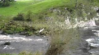 Loop Scar Wharfedale Yorkshire Dales