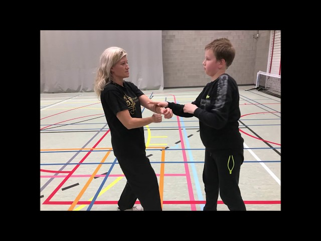 GM Walter Toch invited for workshop Kung Fu for Parantee Federation Belgium 2019