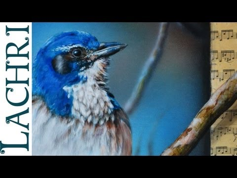 Speed painting - Jay Bird airbrush and acrylic - photorealistic Time Lapse tutorial by Lachri