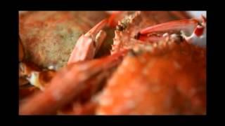 KHAOLAK LAGUNA _ Your personal paradise by the sea (English Version)
