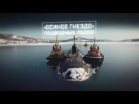 «Осиное гнездо» подводных лодок