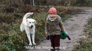 Staszek - Fistaszek: (zespół Downa) Opiekuję się Miłą, czyli mam nie mojego psa