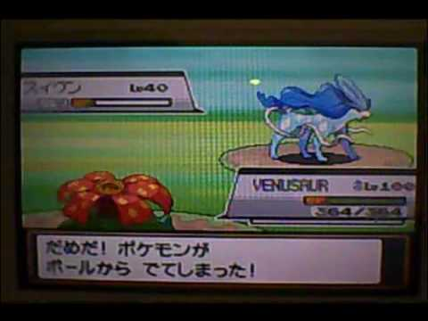 Pokemon Heart Gold And Soul Silver: Shiny Suicune!