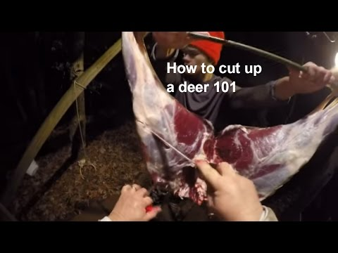 Butchering a deer 101 - how to cut up a whitetail deer
