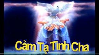 Cam Ta Tinh Cha