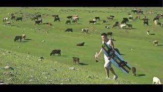 «Кочевой вейкборд»  житель Киргизии прокатился по горной реке с помощью коня