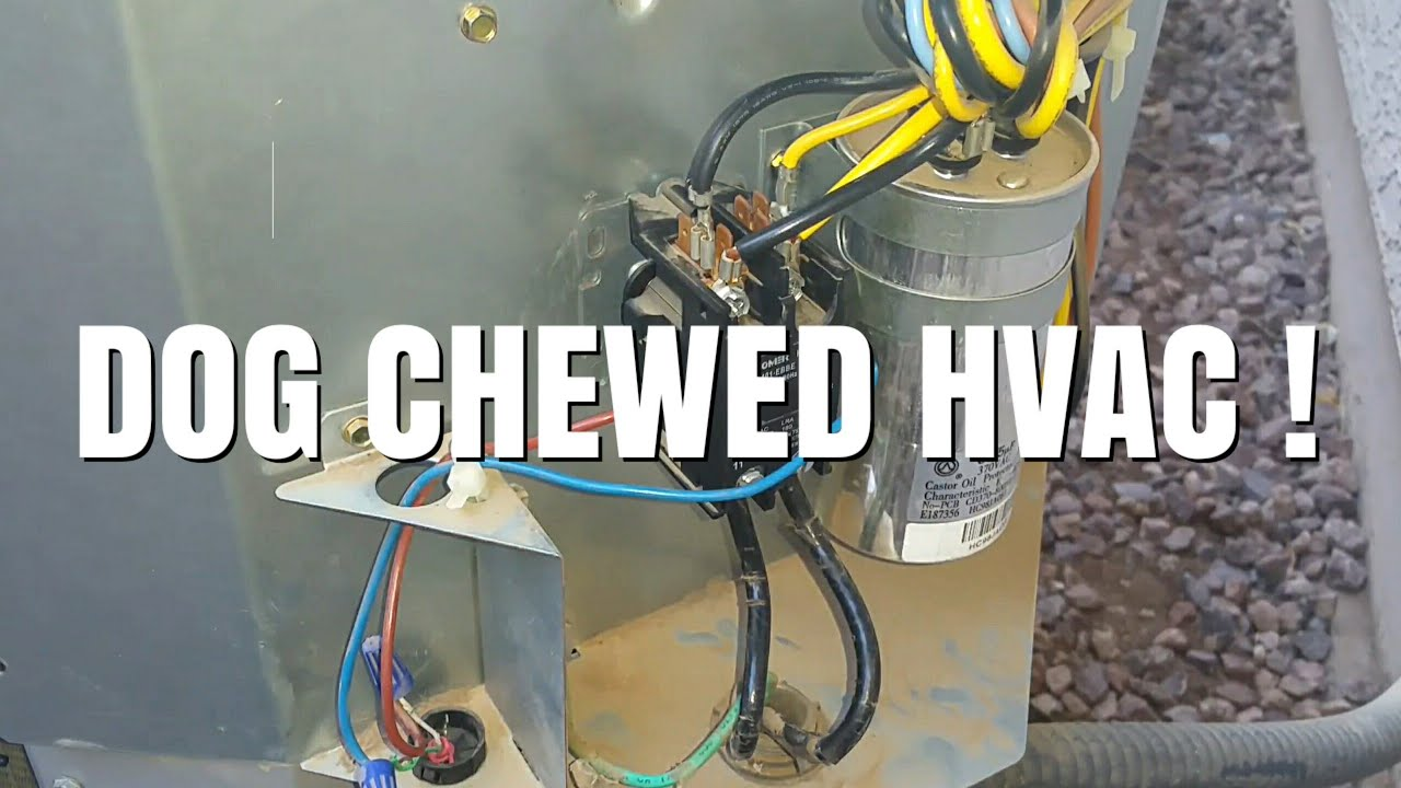 Here Is How To Fix Your HVAC If Your Dog Chewed Your Wires! - YouTube