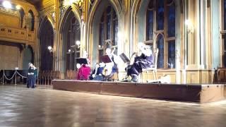 1.video.Senās mūzikas ansambļa jubilejas koncerts  LUDUS -25.Mazā Ģilde.03.11.2013. mob.video.