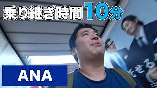 国内線乗り継ぎ時間10分!羽田空港でANAグランドスタッフと猛ダッシュ