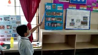 Project at school science fair(1)
