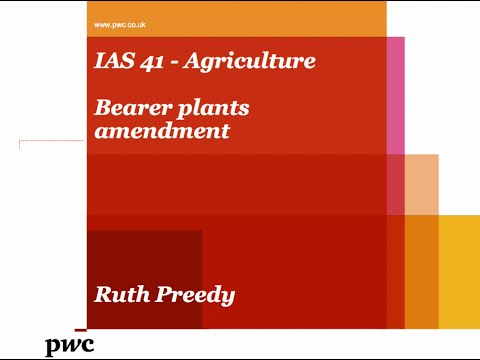 Bearer plants amendment to IAS 41, Agriculture - PwC Global Accounting Consulting Services