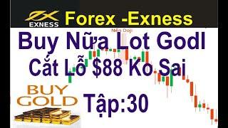Forex -Exness. tập 30,Buy Nữa Lot Godl, Vì Sao Phải Cắt Lỗ $88?Ko Phải Lúc Nào Cũng Kiếm Được Tiền